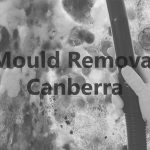 Mould Removal Canberra